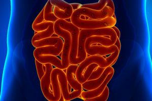 Small intestine pain