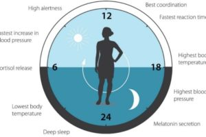circadian clock, functional medicine, sleep, Monterey, Dr Laura Paris